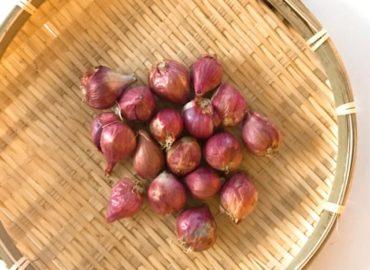 ミャンマー野菜:シャロット(shallot)