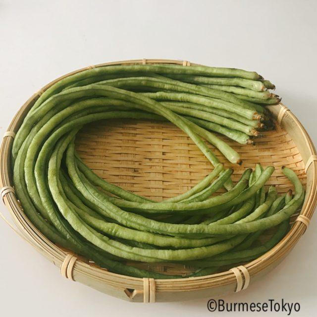 ミャンマー野菜「ササゲ」