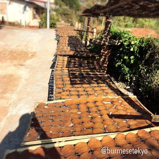 ミャンマーカローの納豆工場の天日干し風景