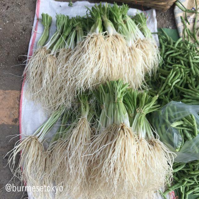 ミャンマーの野菜(ジュミ)